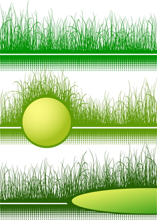 uncultivated: Green grass with place for text isolated on white - 3 illustrations
