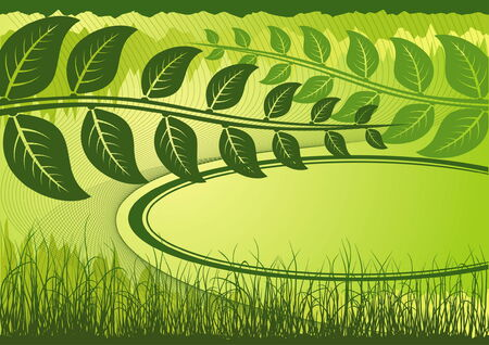 Green summer background with grass and place for text Vector