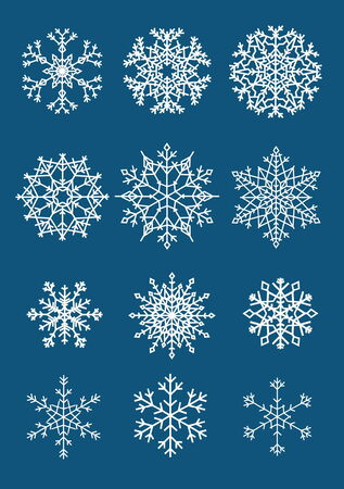 Twelve different isolated white snowflakes on dark background Illustration