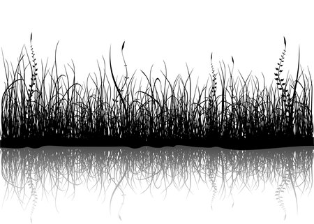 leaves vector: Black grass isolated on white Illustration