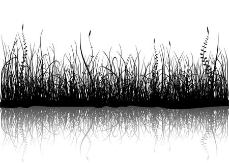 grass land: Negro hierba aislados en blanco