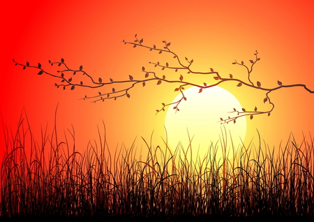 Magic sunset with dark grass and branch Stock Vector - 3384774