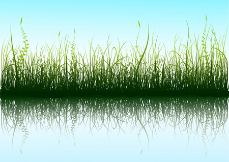 Green grass and blue sky with reflection in water  Stock Vector - 3403525