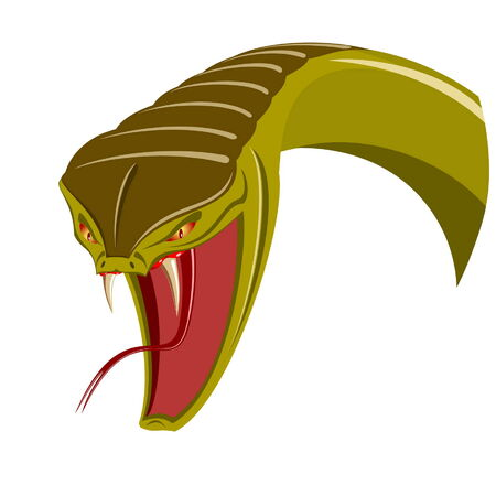viper: Head of snake - isolated on white Illustration