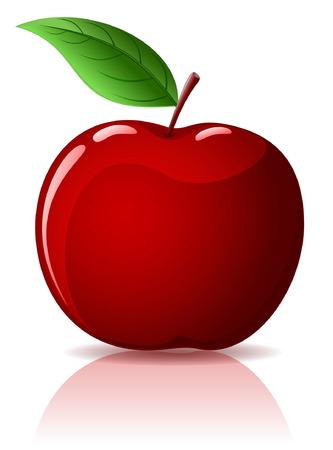 mela rossa: Bella rosso mela con foglia verde isolato su bianco Vettoriali