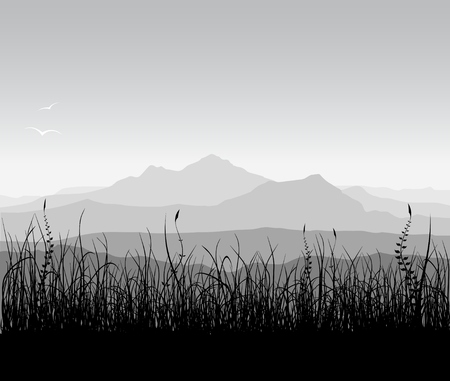 Landscape with grass and mountains.