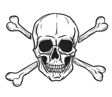 skull: Cr�ne et os crois�s isol� sur fond blanc