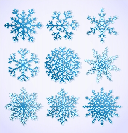 Set of blue paper snowflakes  Vector EPS8  Vector