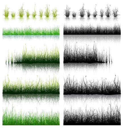 Big Set of Green and Black Grass isolated on white background. Vector illustration. 向量圖像