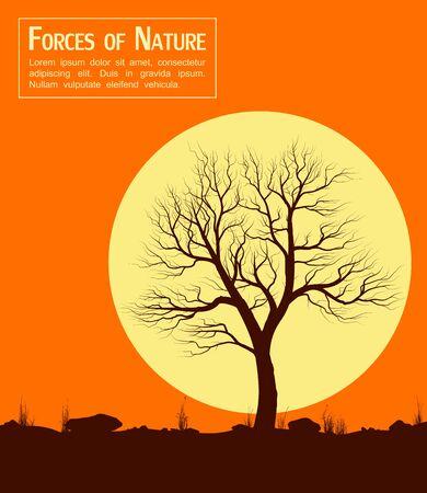 naranjo arbol: Paisaje con árbol viejo al atardecer. Ilustración del vector. Vectores