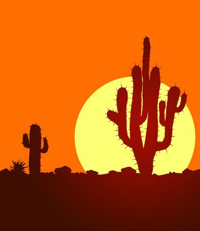lifeless: Sunset in lifeless stone desert with cactuses. landscape with huge warm sun in desert.