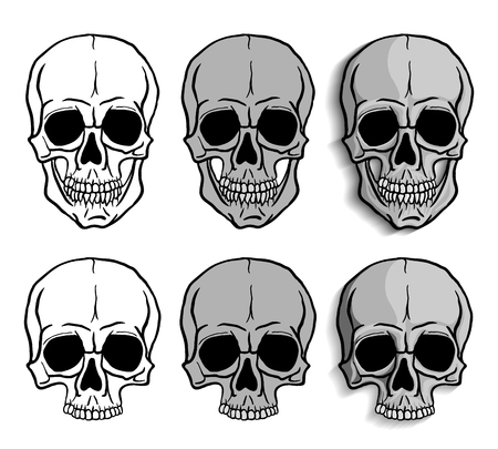 crossed: Set of Skulls isolated over white background. Freehand drawing human skulls. Vector illustration.