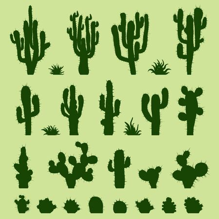 saguaro: Set of green cacti
