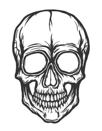 Skull vector isolated on white background. Handdrawn illustration. Illustration