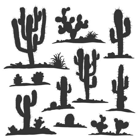 Set of cactuses isolated on white vector illustartion