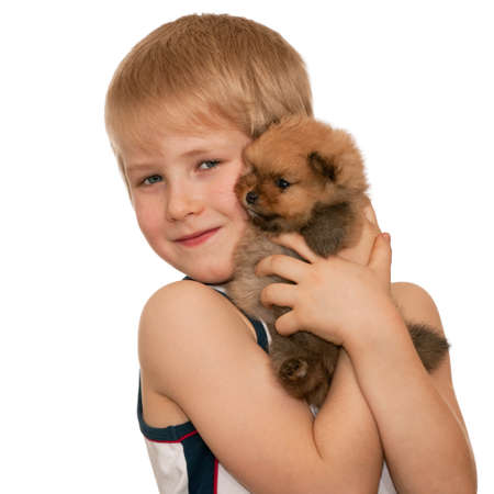 A smiling boy is holding a little puppy; isolated on the white background photo