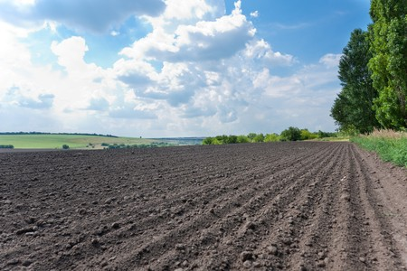 plowed field: A landscape with plowed field and cloudy blue sky