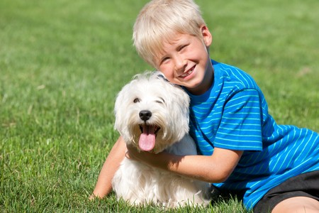 A sitting on the grass smiling boy is hugging his pet Stock Photo - 7518271