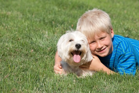 A lying on the grass smiling boy is hugging his pet photo