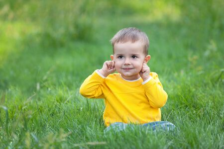 A cheerful kid is sitting on the green grass pointing his ears photo