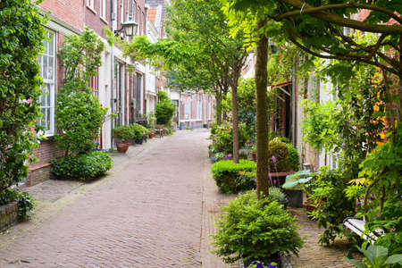 Quiet little street of Haarlem  GPS information is in the file photo