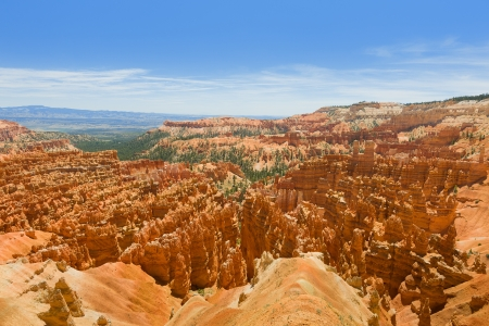 bryce canyon: View of Bryce Canyon in a summer day from the Rim Trail