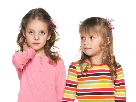 A portrait of two fashion preschool girl on the white background photo