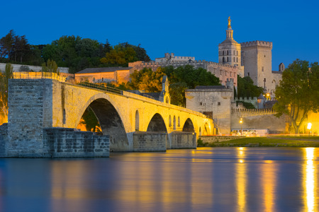 View of Avignon in a summer night
