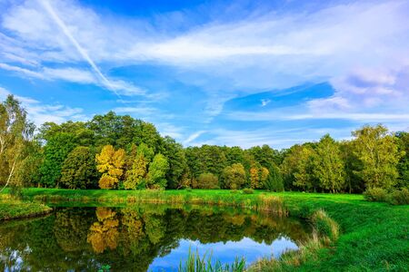 bushy: Autumn Scenery with Bushy Colourful Trees by the Pond at Sunny Day