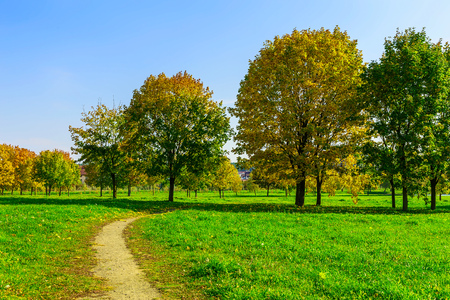 nature scenery: Autumn Park with Path and Multicolored Trees on Green Grass at Sunny Day Stock Photo