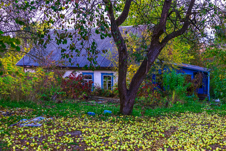 View on Country Home with Yard in Apples under Tree in Autumn Stock Photo