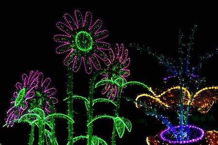 illuminated: Construction of Flowers Illuminated by Colorful Lamps at Night Stock Photo