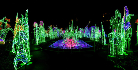 sculptures: View on Garden of Christmas Lights with Colorful Sculptures at Night