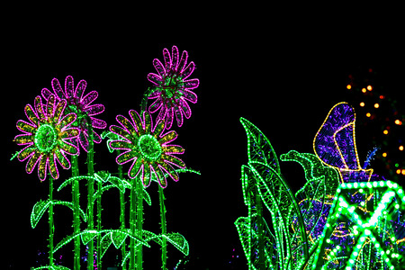 illuminated: Sculpture of Flowers Illuminated from Christmas Colorful Lamps at Night