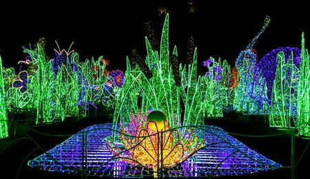 sculptures: Garden of Christmas Lights with Colorful Sculptures at Night