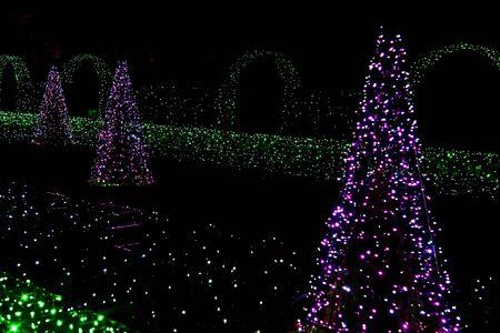 christmas light bulbs: Fir-Trees and Grass from Christmas Light Bulbs in Royal Garden