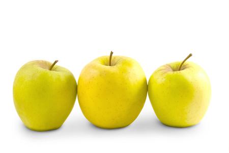 arbol de manzanas: Tres de manzana, aislado sobre fondo blanco Foto de archivo