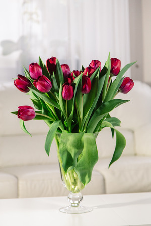 Bouquet of pink tulips in an interior on a white background