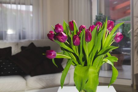 Bouquet of pink tulips in an interior in a glass vase Reklamní fotografie