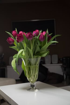 Bouquet of pink tulips in an interior in a glass vase on dark background