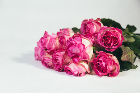 Bouquet of pink roses isolated on white background Reklamní fotografie