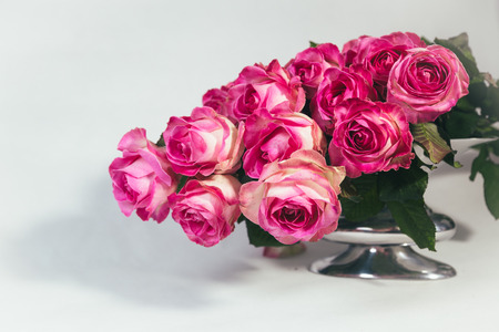 Bouquet of pink roses in the metal vase isolated on white background Reklamní fotografie