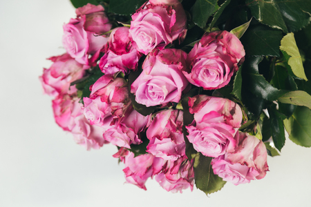 Bouquet of pink roses upside-down isolated on white background Reklamní fotografie