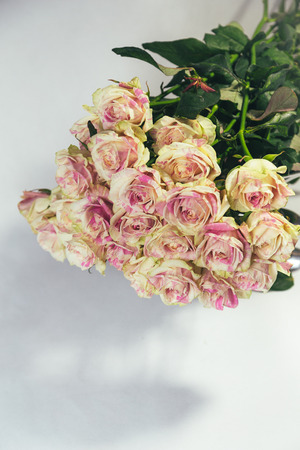 Bouquet of multi-colored yellow and pink roses upside down isolated on white background