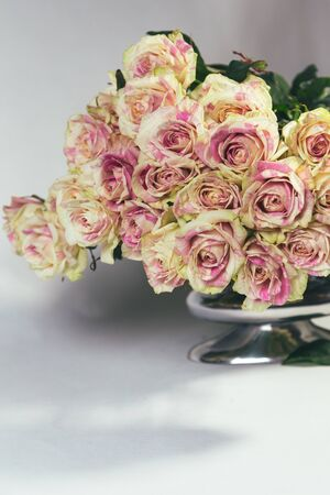 Bouquet of multi-colored yellow and pink roses in the metal vase isolated on white background