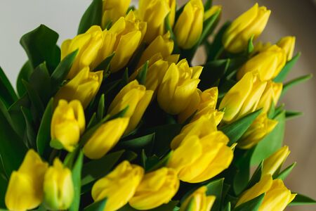 Bouquet of yellow tulips in an interior macro