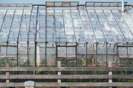 greenhouse exterior with plants inside Reklamní fotografie