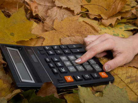 The picture represents a hand considers on the calculator on autumn leaves   Stock Photo