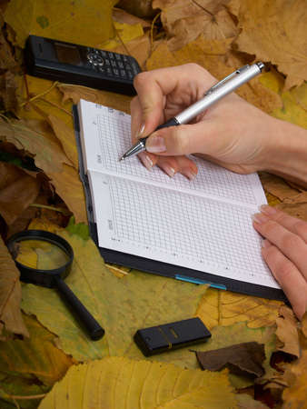 Office accessories against lying autumn leaves photo