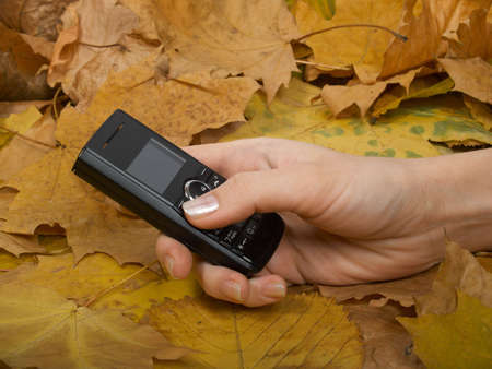 Female hand with a mobile phone against yellow autumn leaves